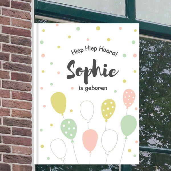 Geboorteborden voor aan het raam - Ballonnen feest - Mintgroen